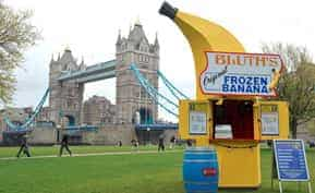 Lessons from the Banana Stand Cafe: SMB Software on a Budget